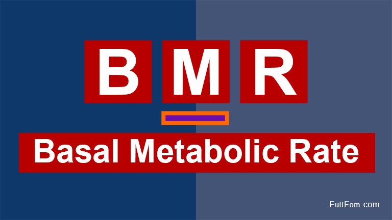 BMR full form